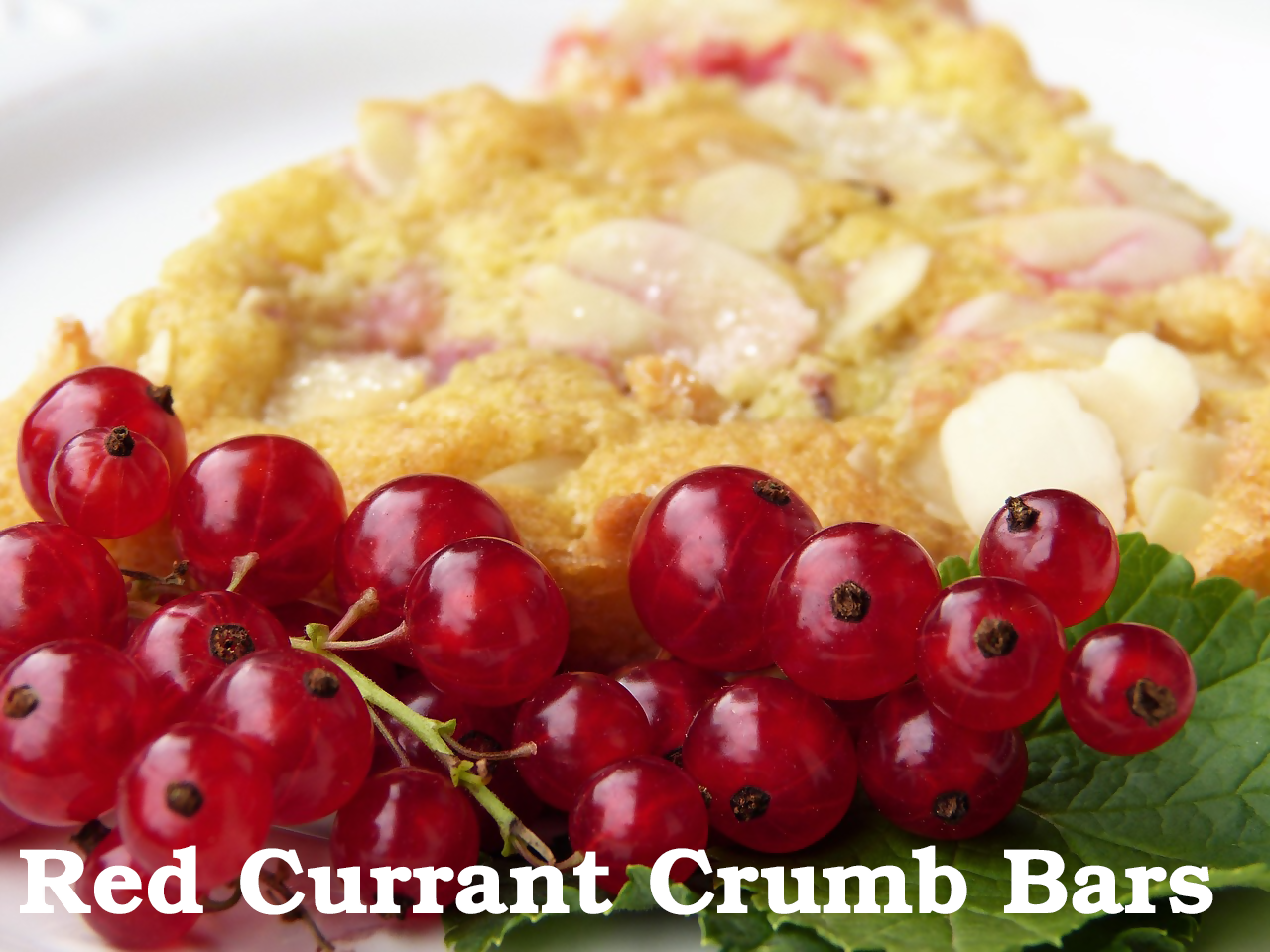 Red Currant Crumb Bars